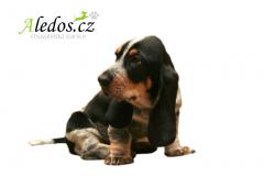 012-Aledos-smaller